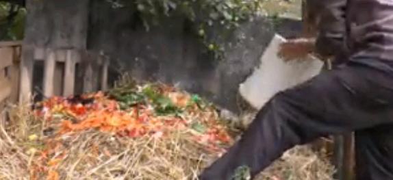 Compsotage dans compost